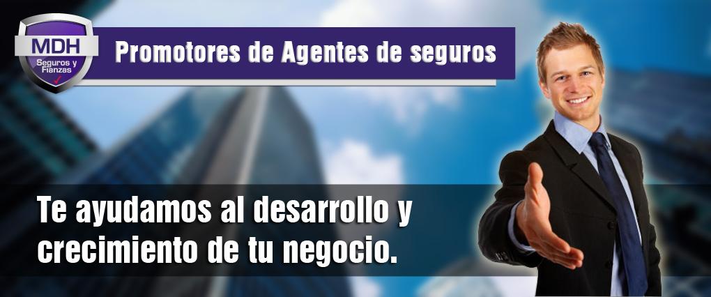 Promotores de Agentes de seguros